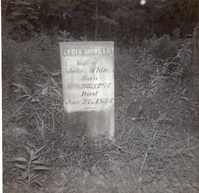 Grave of Lydia Morgan Timmons White (1784-1834)