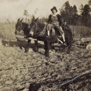 Lillian and Bubba Hanna  Plowing.jpg